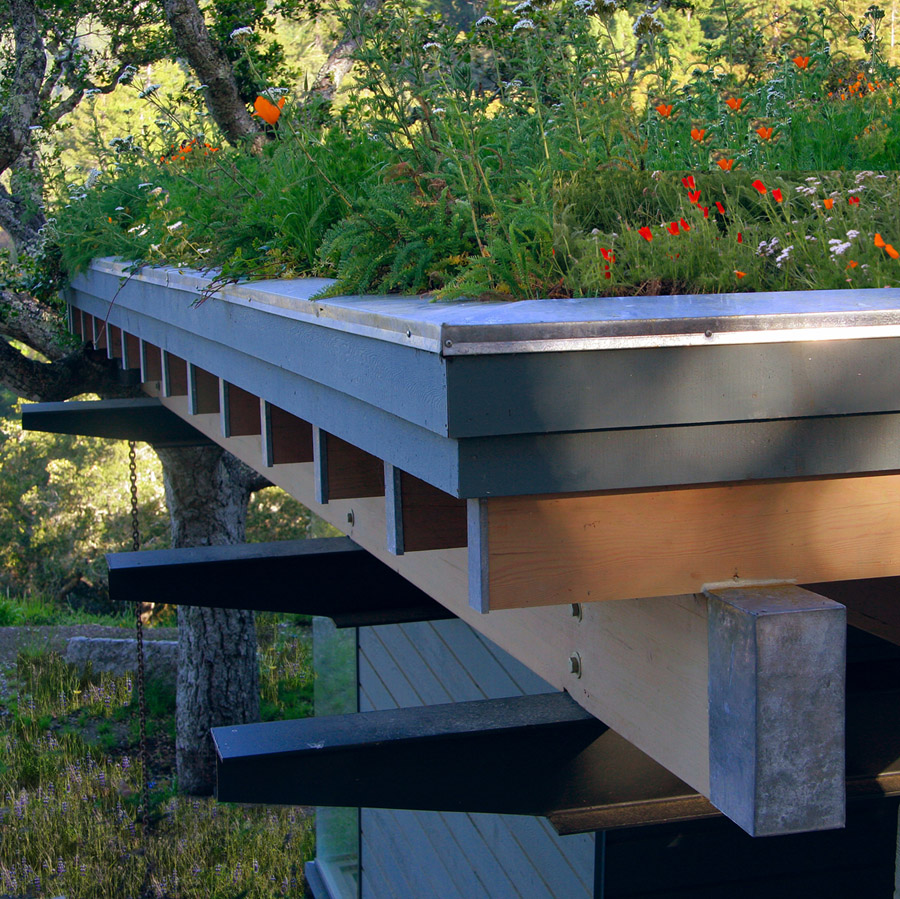 Home Has Living Roof New Eco Designs